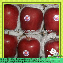 18kg carton manzana huaniu