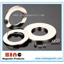 Rare Earth Ring Permanent Neodymium Magnet for Speaker