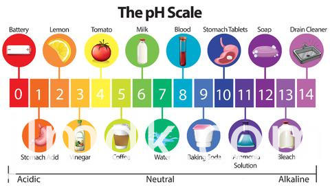 Ph Level Large