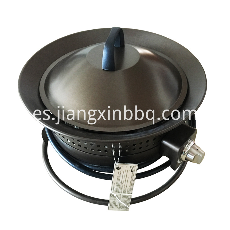 Portable Steel Liquid Propane Fire Pit