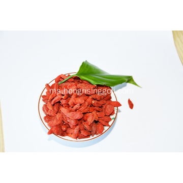 Kualiti Tinggi Goji Berry Konvensional Berry Mix Berry