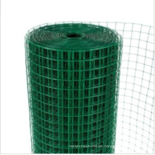 PVC Coated Square Wire Mesh/Welded Wire Mesh