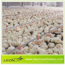 LEON whole automatic chicken shed feeding equipment for poutlry farm