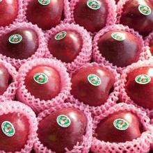 Global Gap para chinês Fresh Huaniu vermelho Apple