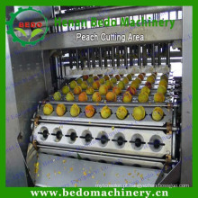 Máquina para remoção de pedras de frutas / removedor de sementes