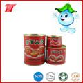 Pasta orgánica saludable de tomate Fromtomato Paste Plant