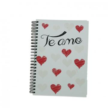 HEART COLOUR CHANGING SPIRAL NOTEBOOK-0