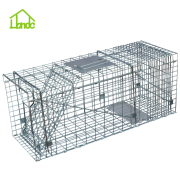 Live Catch - Cage à piège à chat