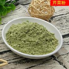 Hot Sale Air Dried Celery Powder