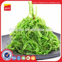 Fornecedor de ouro FDA Japão Frozen wakame salada de algas
