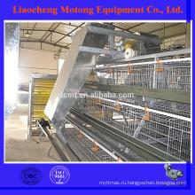 Высокое качество дизайн слой курицы клетки для птицефабрики (полное оборудование для птицеводства)