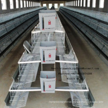 Industrial Steel Chicken Cage Henhouse for Laying Broiler Chick