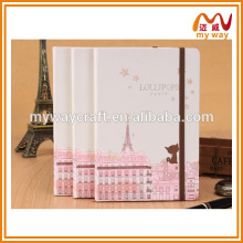 school hardcover notebook,the series of cute cheap paper notebooks