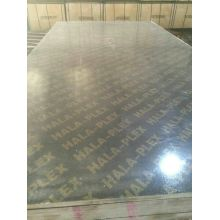 Building Construction Material / Commerical Plywood MDF