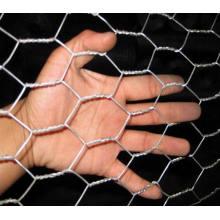 Filetage en fil hexagonal galvanisé à maille hexagonale et PVC