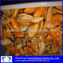 FROZEN COOKED MUSSEL MEAT