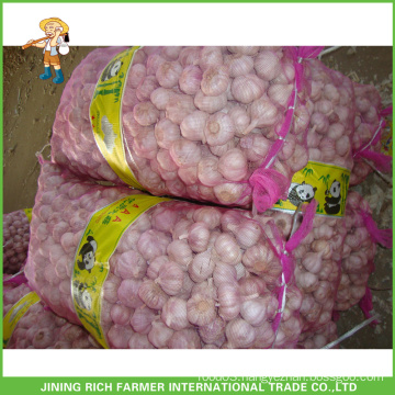 Chinese New Fresh Normal White Garlic 4.5CM