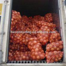 Zwiebel aus Shandong