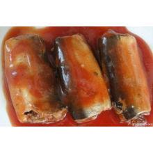 Sardina enlatada con sabor diferente (HACCP, ISO, BRC, FDA)