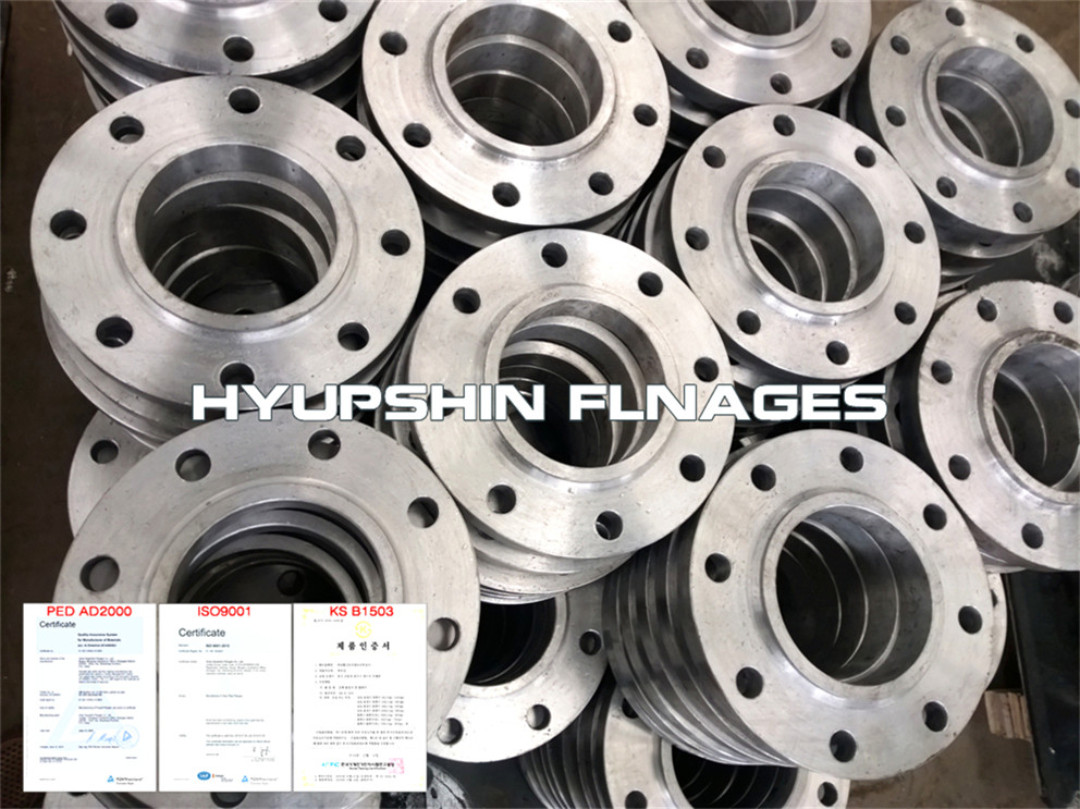 Hyupshin Flanges Slip On Raised Face Hubbed Boss