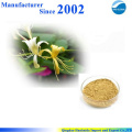 GMP factory supply high quality pure nature Honeysuckle Flower Extract