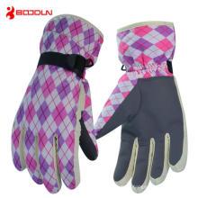 Full Finger Sports Ski Glove for Winter (BD15007)
