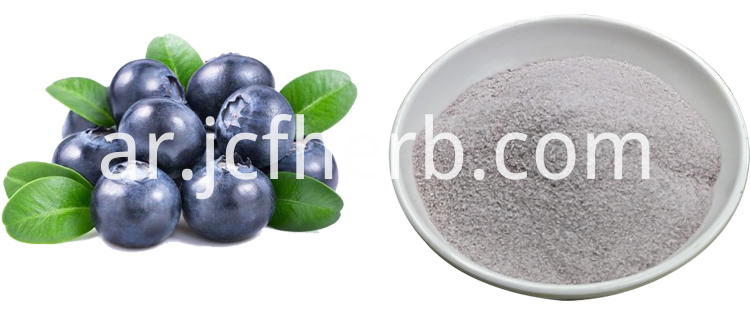 instant blueberry juice powder