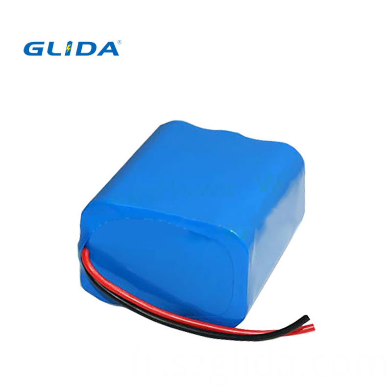 Lithium Battery Pack 111