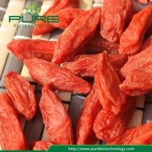Qinghai Goji Berry 2018 cosecha al por mayor