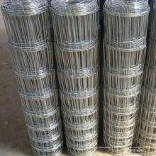 Fabrikverkauf heiß verzinktem Scharniergelenk Knoten 1,8 m hohe Rinder Zaun