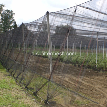Diamond Hole Rajutan HDPE Anti Bird / Pigeon Net