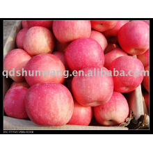 chinese fuji apple (fresh, red, sweet)
