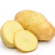 2021 New Crop Cheap Price High Quality Export Natural Fresh Sweet Potato