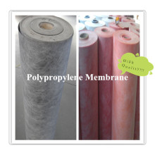 Polymer PP and PE Waterproof Membrane for Construction Waterproofing System