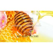 High quality natural honeydew acacia honey