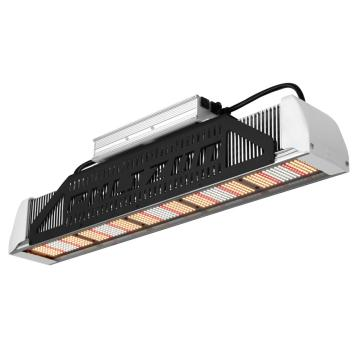240w Led Grow Light distancia plántulas enfriamiento automático