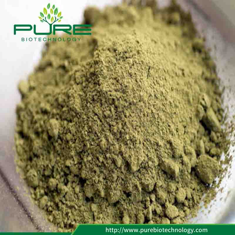 Hemp Seeds Powder