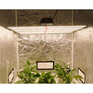 Nuovo modello Led Grow Light 640W