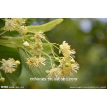 raw lime honey
