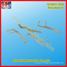 Precision Forming Stamping From Chinese Manafacturer (HS-FS-003)