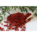Low moisture Pure authentic wolfberry Goji Berry