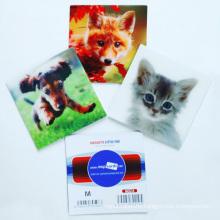 Customized Professional 3D Lenticular Fridge Magnet