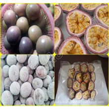 FROZEN PASSION FRUITS FROM VIETNAM