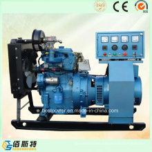 10kw Mini-Watt unidad de generador de gas de uso doméstico