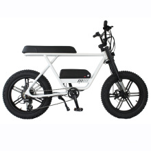 20 inch 11.6Ah lithium battery electric fat tire e bicycle