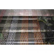 Chicken Wire Mesh/Hexagonal Wire Netting