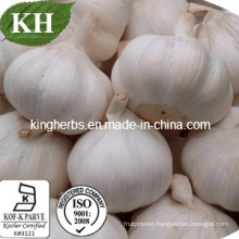100% Natural Deodorized Garlic Extract Allicin 1%-5% by HPLC
