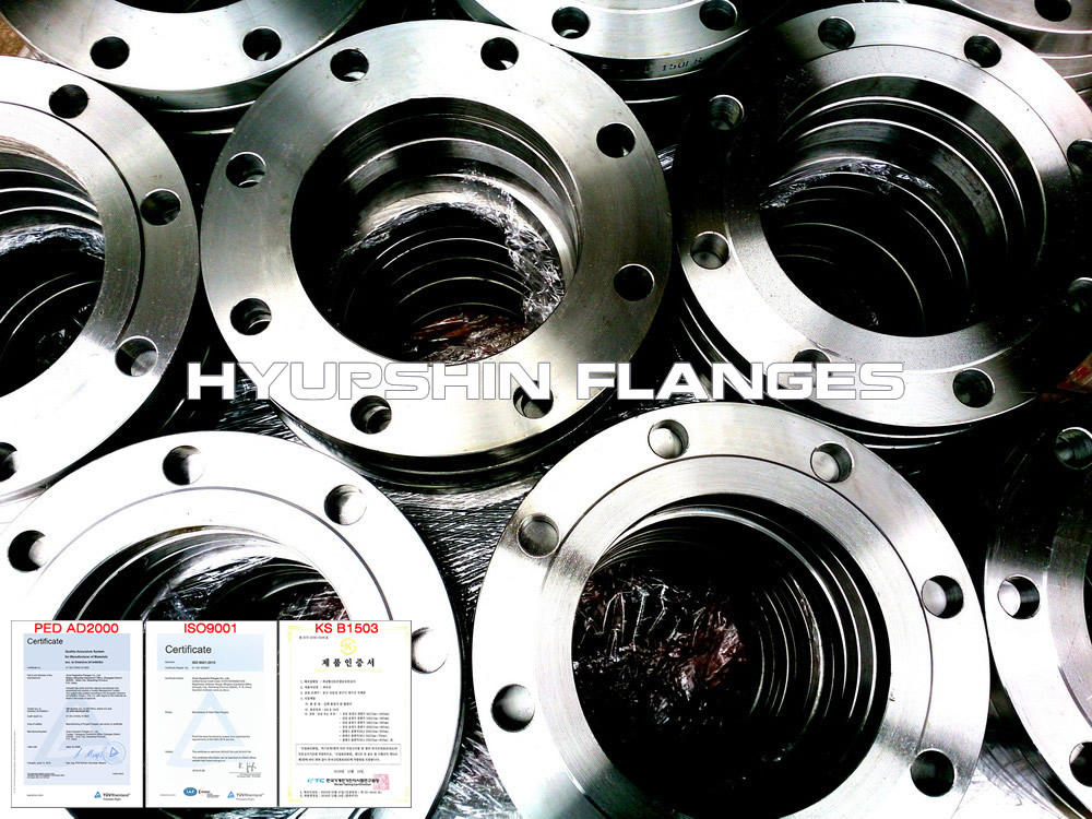 Hyupshin Flanges Raised Face Rf