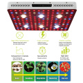 Sistemas de cultivo hidropónico COB Led Grow Light
