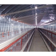 Full automated poultry house with battery cage for chicken